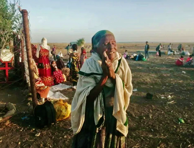 Day 38 of the war on Tigray: highlights  from media platforms