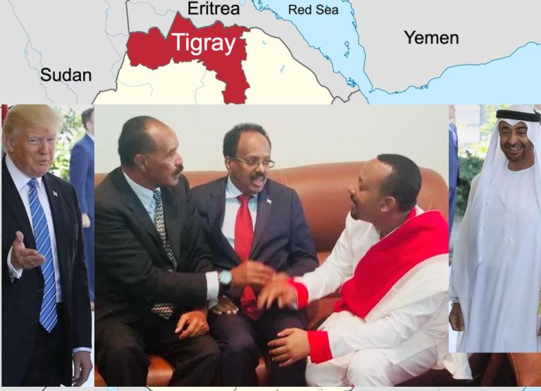 The war on Tigray: The support and involvement of the United States, Amhara, Eritrea, Sudan, Djibouti, Somalia and UAE