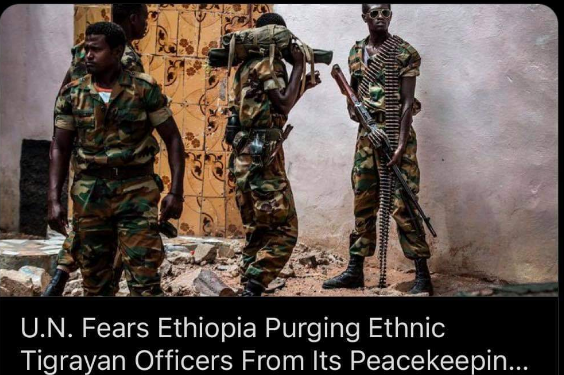 Where are the Tigrayan members of Ethiopian National Defence Force?
