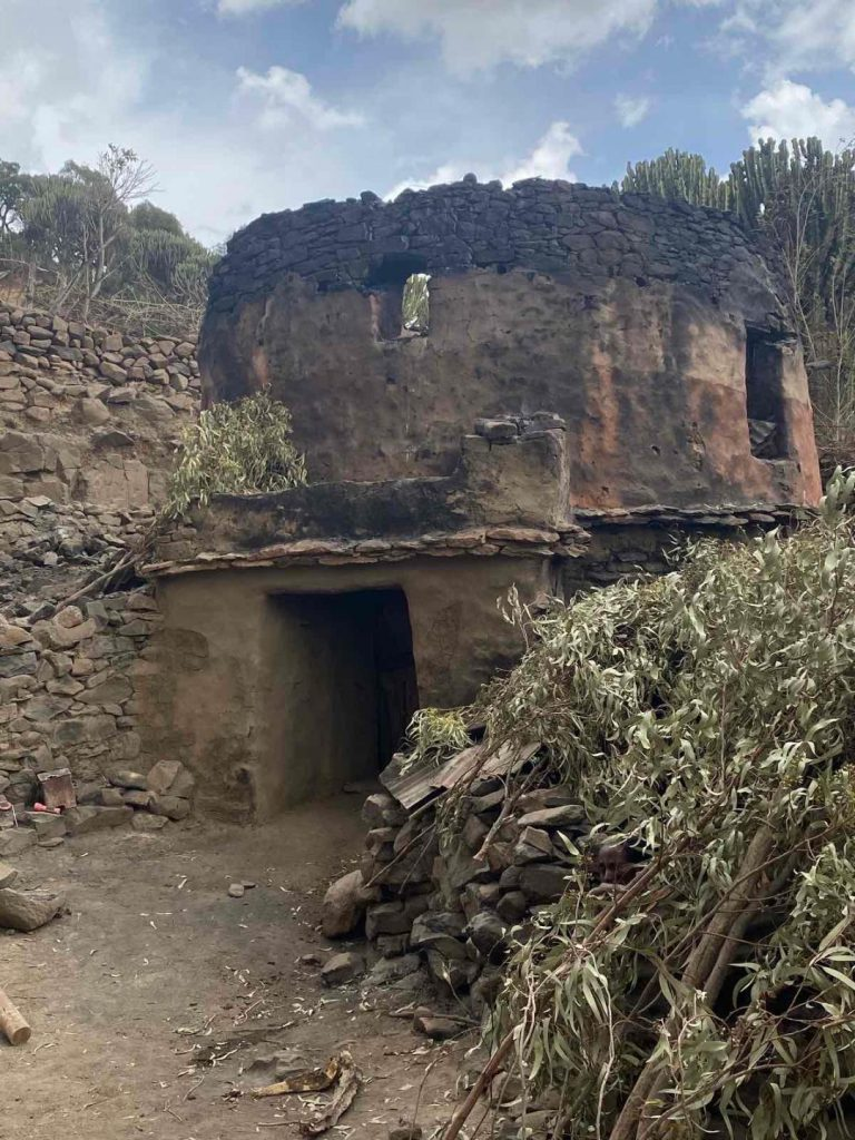 The environmental cost of the War on Tigray
