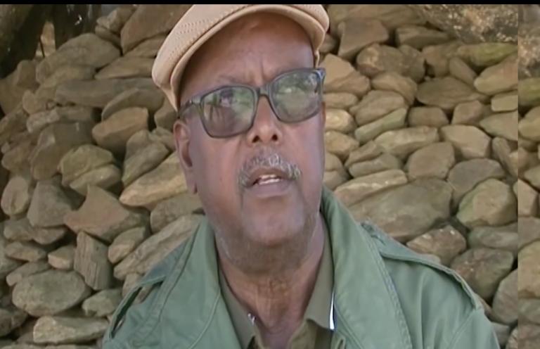 Summary of General Tsadqan Gebretensae's Interview with Dimtsi Weyane